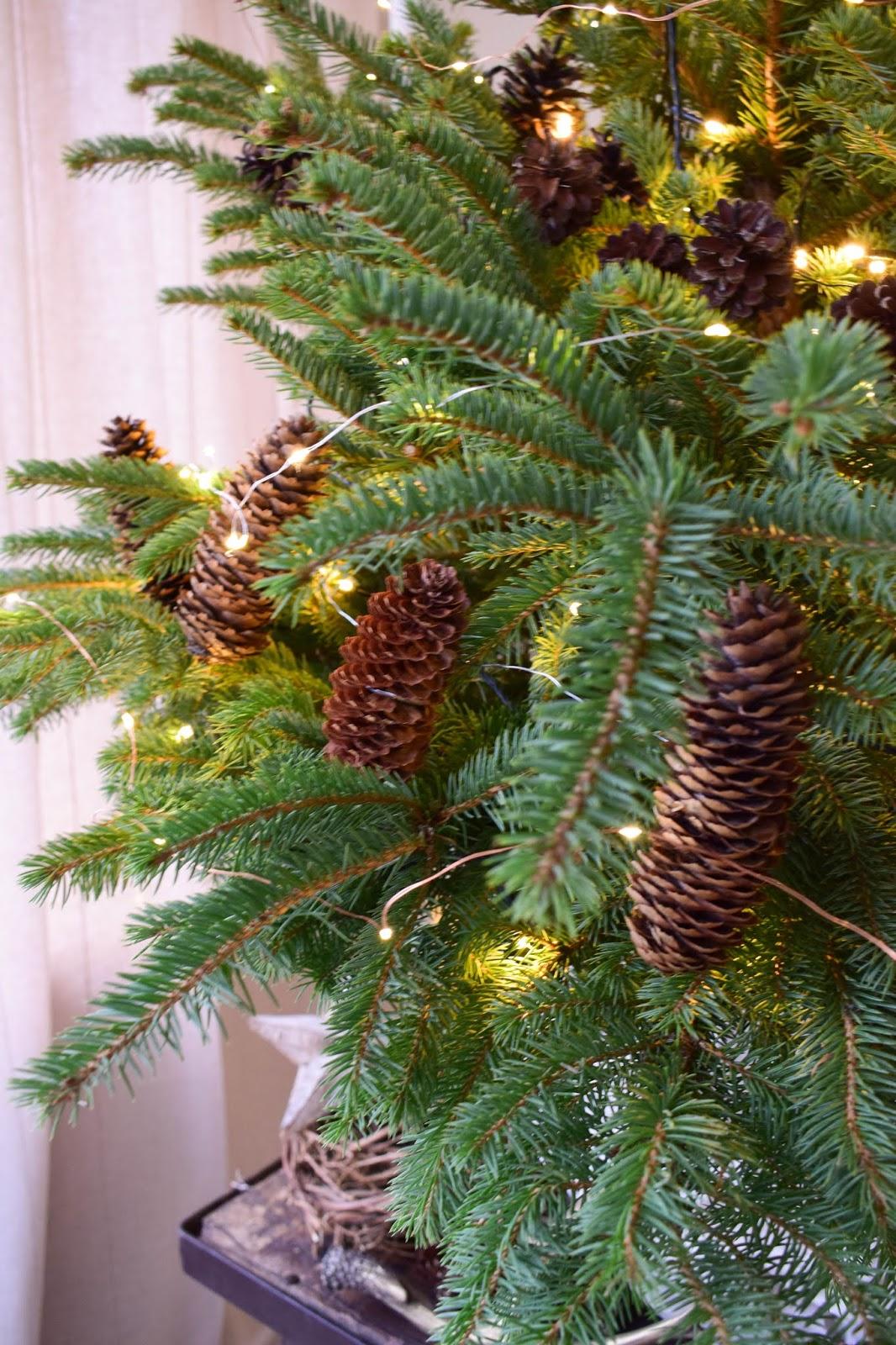 Weihnachtsbaum Dekorieren.Natürliche Deko Für Den Weihnachtsbaum Weihnachtsbaumschmuck