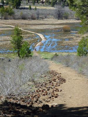 Tomkins Memorial Trail (TMT)