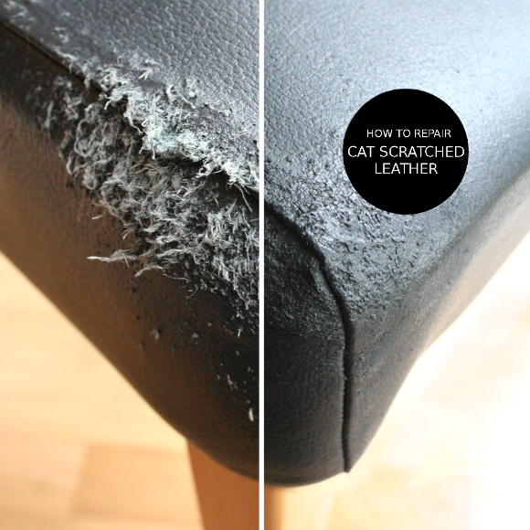 Leather Sofa Scratch Repair How To Stop Cat Scratching