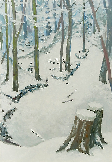 Rastplatz im Winterwald