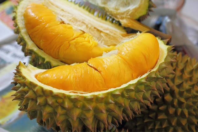 "Amazing Benefits of Durian ""King of Fruit"" for Healthy and Body 2"