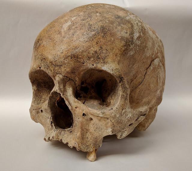 A European origin for leprosy?