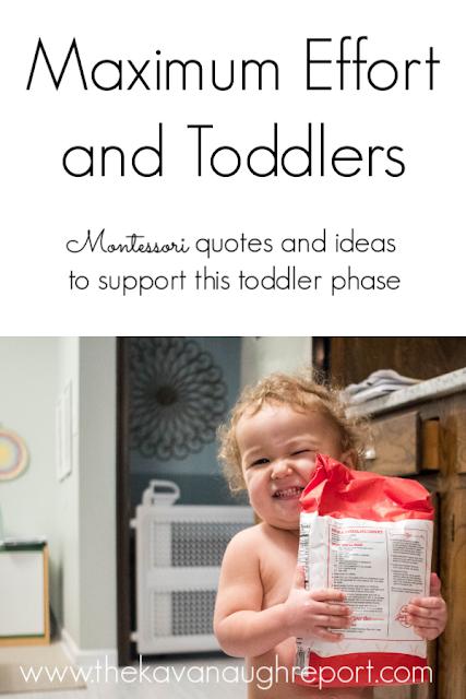 Quotes and ideas about maximum effort for toddlers from Maria Montessori