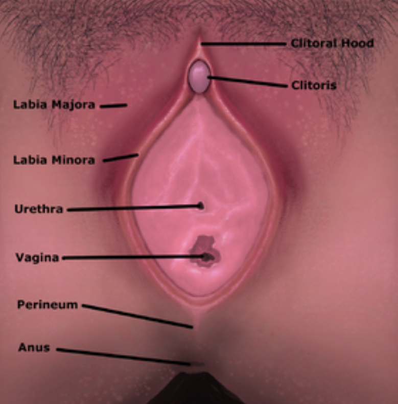Botox Vaginismus