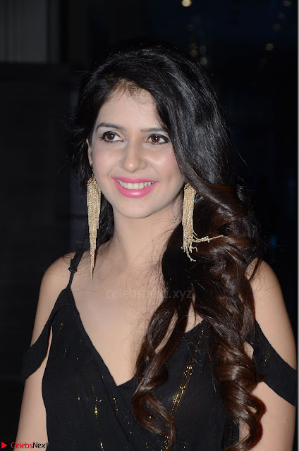 Kashish Vohra at Rogue Movie Audio Launch 001.JPG