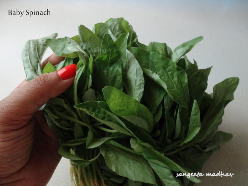 Mustard Seeds 500 Tat Soi Tatsoi Tah Tsai Spinach Seed Combined S/&H