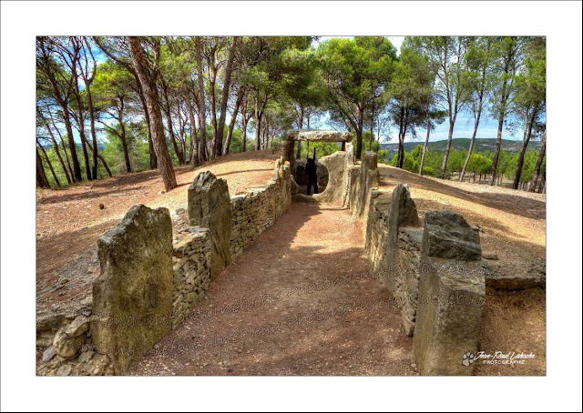 le dolmen à couloir sur un tumulus sous les pins et le ciel bleu