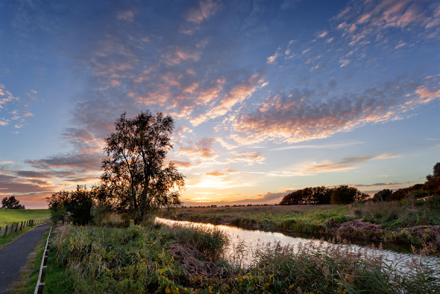 Tree and river under a colourful sunset sky in the Cambridgeshire Fens