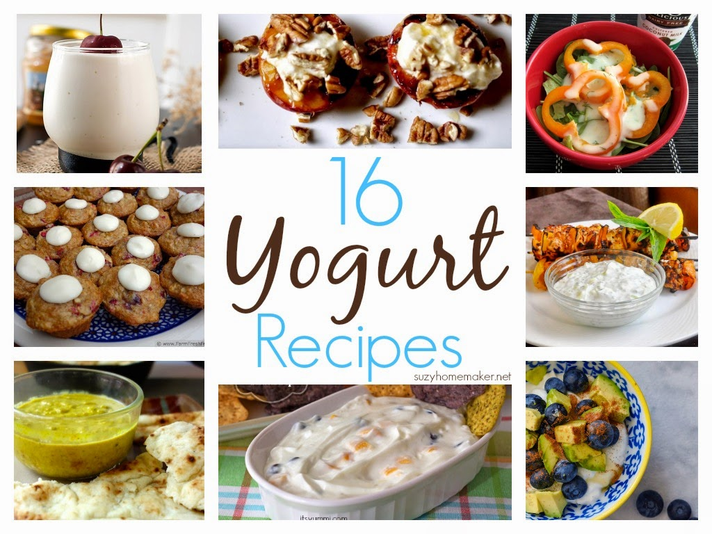 16 yogurt recipes | suzyhomemaker.net