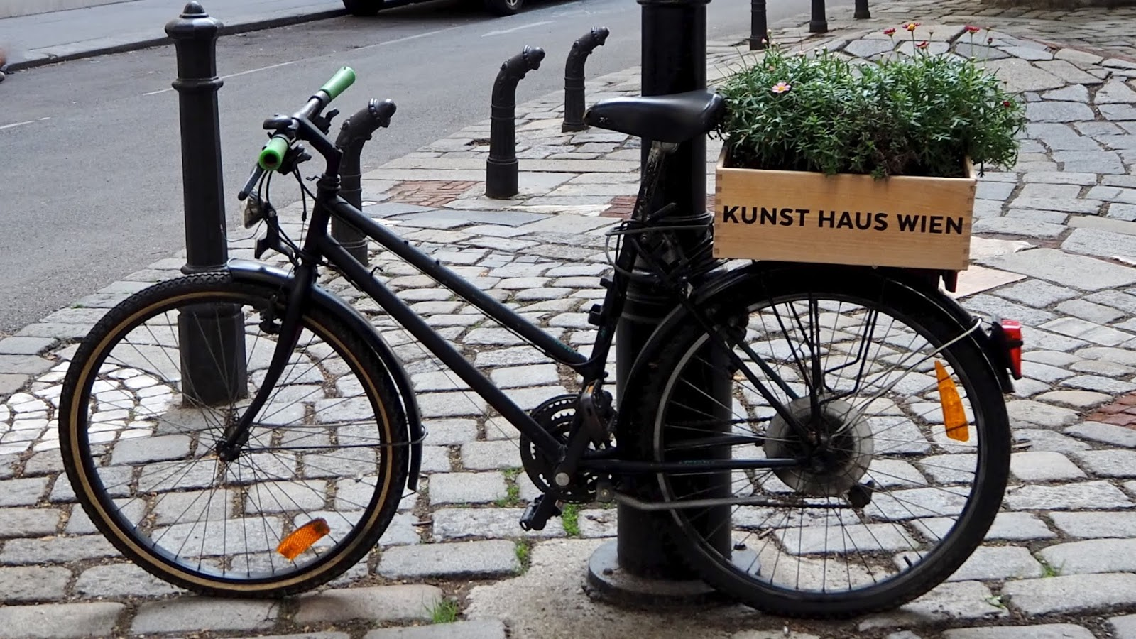 Kunst Haus Wien Bicycle with Planter