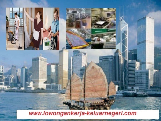 Lowongan Lowongan Kerja ke Taiwan 2015 - Info Kontak Loker Luar Negeri 0877-8195-8889 - 081320432002 - 085724842955 - 089681867573 pin 74BAF1FB