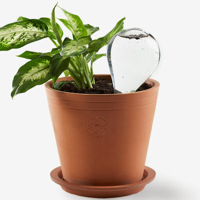 Innovative and Creative Watering Gadgets for Planters (10) 1