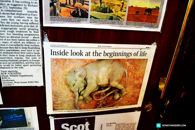 bowdywanders.com Singapore Travel Blog Philippines Photo :: Scotland :: The Elephant House in Edinburgh: Cafe Where J.K. Rowling First Penned Harry Potter