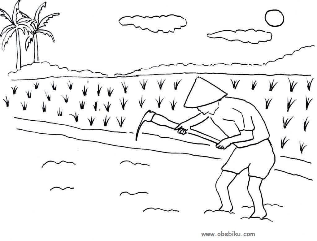 Gambar Kartun Petani Menanam Padi Keren Bestkartun