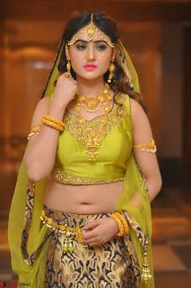 Sony Charishta in Green Choli Ghagra Transparent Chunni Ethnic Wear March 2017 042.JPG