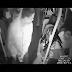 Vídeo mostra momento em que assaltantes invadem ônibus