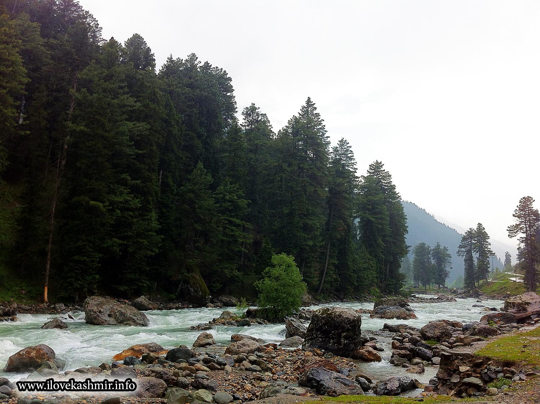 I Love U Kashmiri