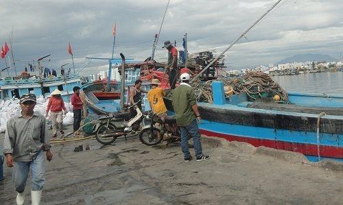 Đà Nẵng tăng cường các giải pháp chống khai thác hải sản bất hợp pháp trên biển