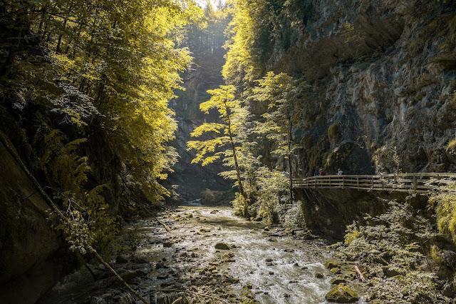 Rappenlochschlucht Staufensee Dornbirn Wandern-Vorarlberg 01