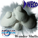 AAP Wonder Shells