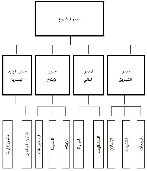 الهياكل,التنظيمية