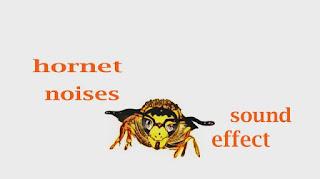 how hornet sounds like