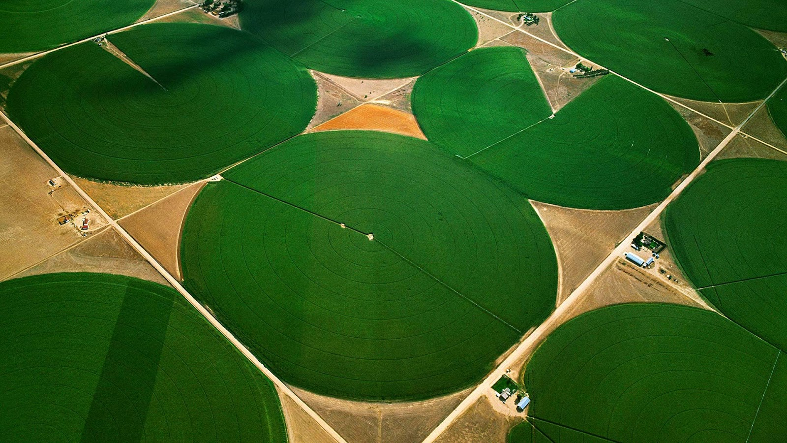 Circular agricultural fields in Morgan County, Colorado © Jim Wark/Getty Images