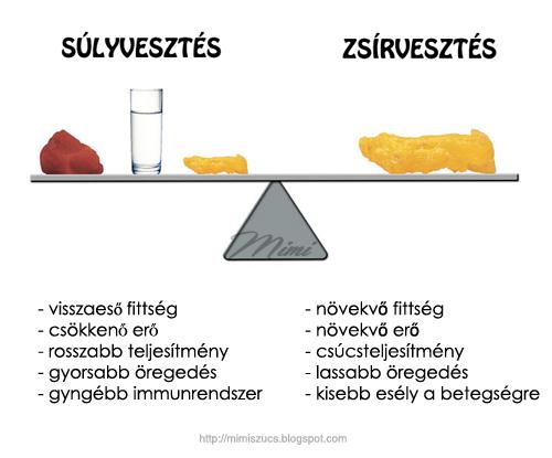 zsírvesztés étrend