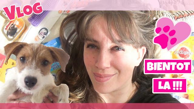 adoption, chien, haul, action, katy's family, vlog, maman, famille, recettes, lasagnes, rapides