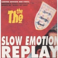 Slow Emotion Replay