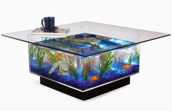 fish tank games online at Pet Games. You will find free goldfish games