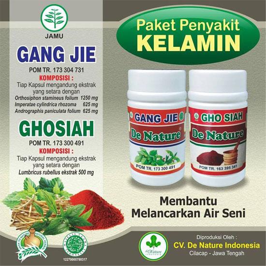 Obat Sipilis dan Gonore Gang Jie Gho Siah