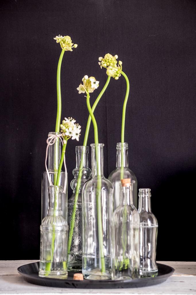 www.fim.works | Lifestyle Blog | weißer Milchstern, Gärtnerschreck in Weiß, Sammlung alter Glasflaschen, Flaschensammlung