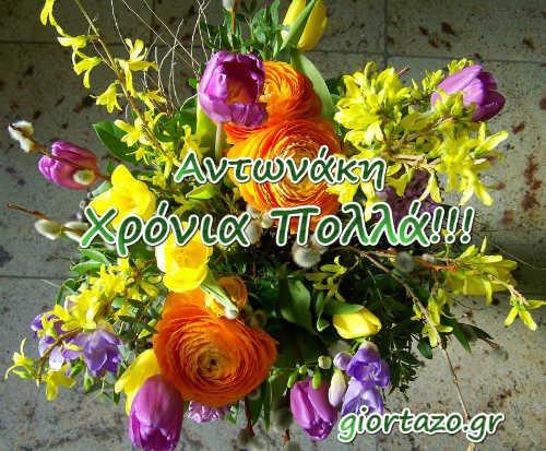 Αντώνιος, Αντώνης, Τόνης, Νάκος, Αντώνας, Αντωνάκος, Αντωνάκης, Τόνυ, Αντωνία, Αντωνούλα, Τόνια