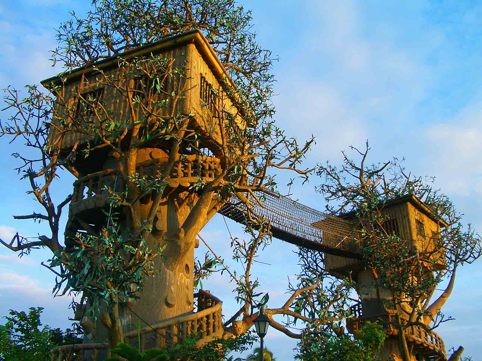 Top 20 Beautiful And Amazing Tree House Wallpapers,Pics on Modern:szae7Exnfpq= Amazing Houses  id=31955