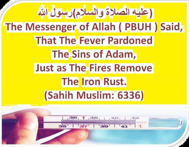 Islam,fever,happens,জ্বর হলে,Knowledge,sahih muslim,sahih bukhari