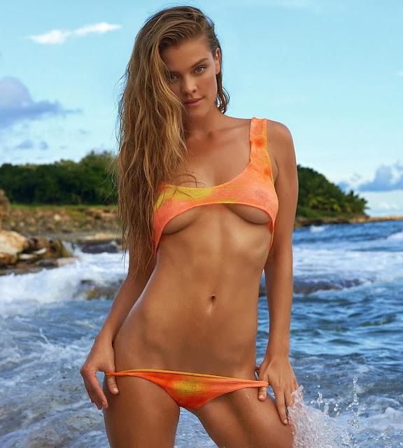 Nina Agdal Topless Pic