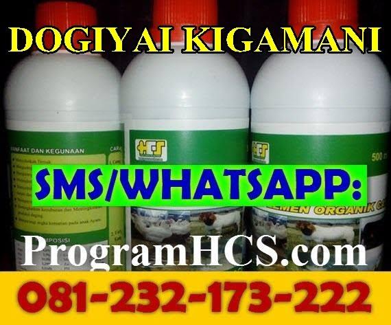 Jual SOC HCS Dogiyai Kigamani