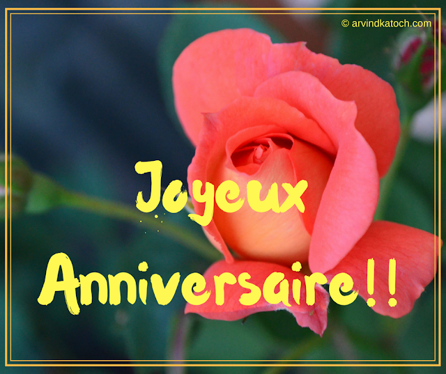 Simple, French, Rose, Bud, Birthday Card,