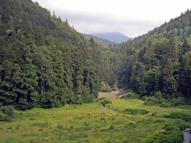 Międzygórze i okolice