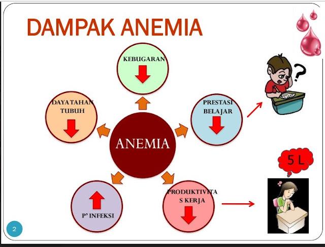 Senam Anemiaction Demi Indonesia Bebas Anemia Di Masa Depan