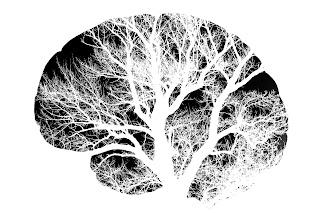 Acupuntura y las respuestas neurales del cerebro