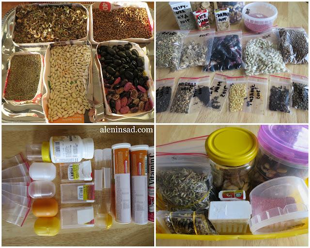 свои семена, сбор семян, аленин сад, хранение семян, семена фасоли, календулы, кориандра, петрушки, укропа, пакеты для хранения семян, упаковка для хранения семян, банки, киндер-сюрпризы, тик-так, от витаминов, от бахил, использование