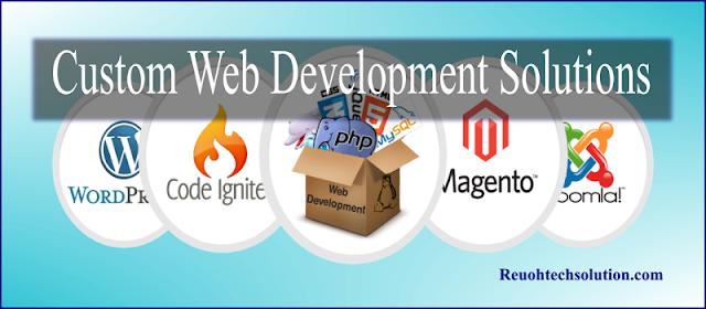custom website solutions package