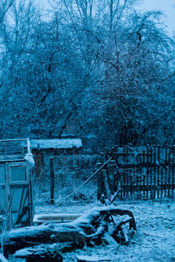 Снегопад в апреле. Сумерки.