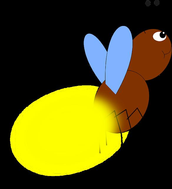 """Fakta menarik tentang kunang-kunang berikut Membuat Kita Berkata """"WOW""""!"""