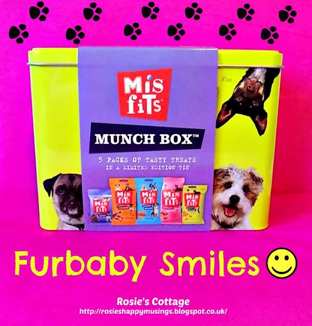 Misfits Furbaby Munch Box Dog Treats