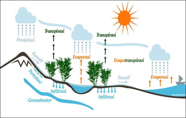 Siklus Hidrologi Pengertian Proses Gambar dan