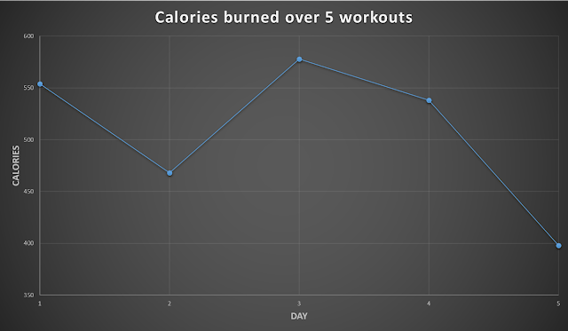 My Weight Loss Transformation Blog: Fitness Blender's 5 Day