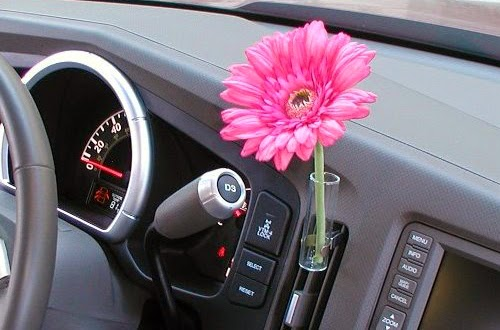 So Flowers In Volkswagen Beetles What S That All About